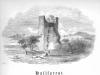 26-hallforest