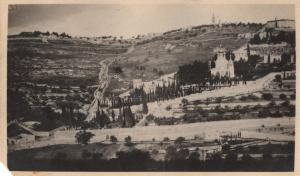 Looking at the Mount of Olives. The Russian church (with onion shape domes) is on the right. Gethsemane - at the bottom